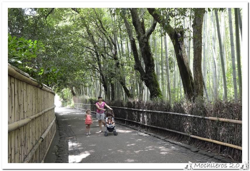 Arashiyama y el Bosque de Bambú – Tenryuji – Ryoanji