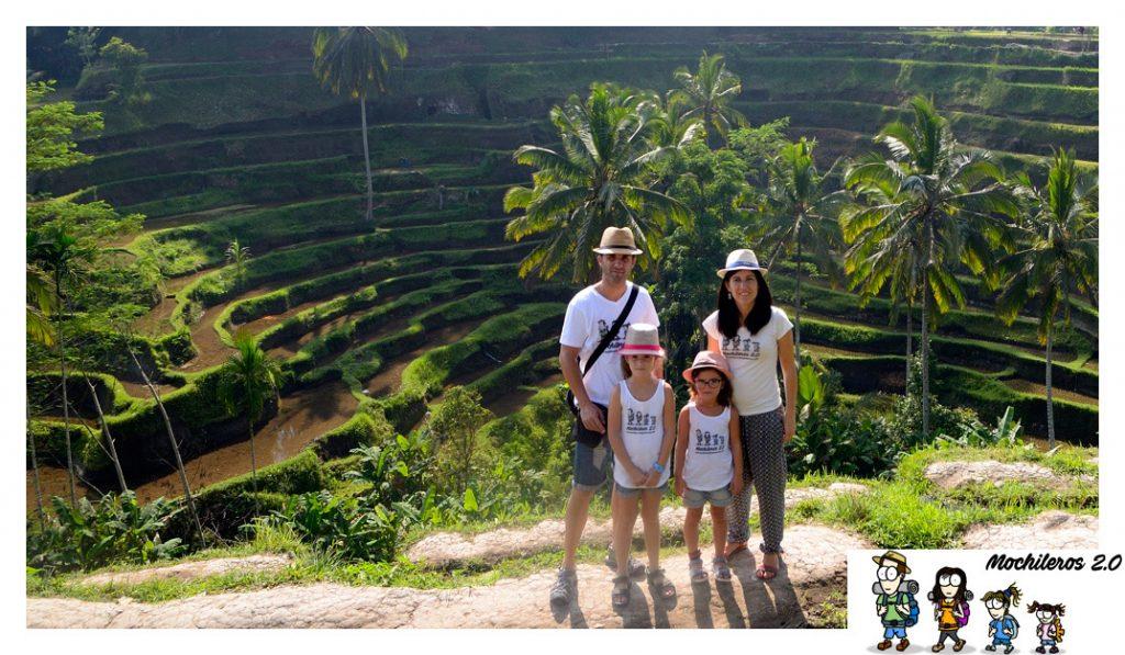 bali arrozales tegalalang