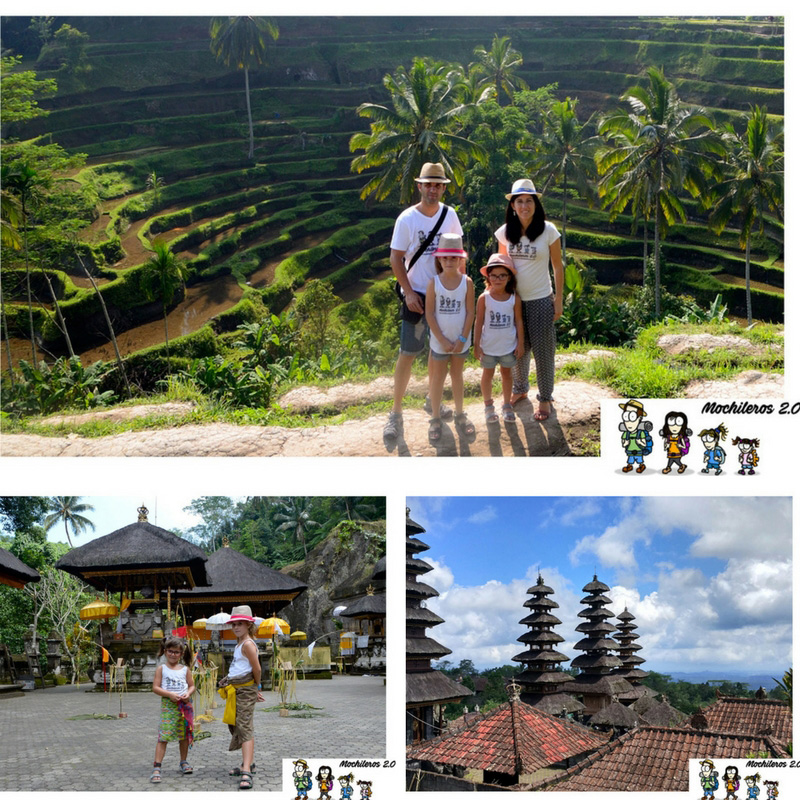 Recorriendo Bali: De los Arrozales Tegalalang al Templo Madre