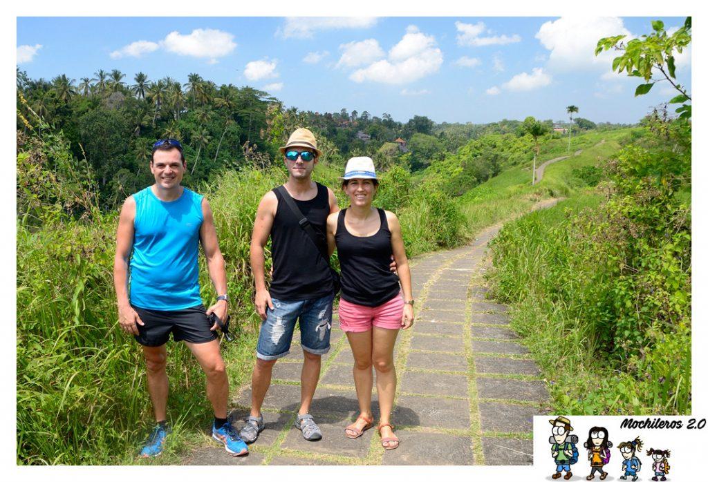 ubud sendero arrozales