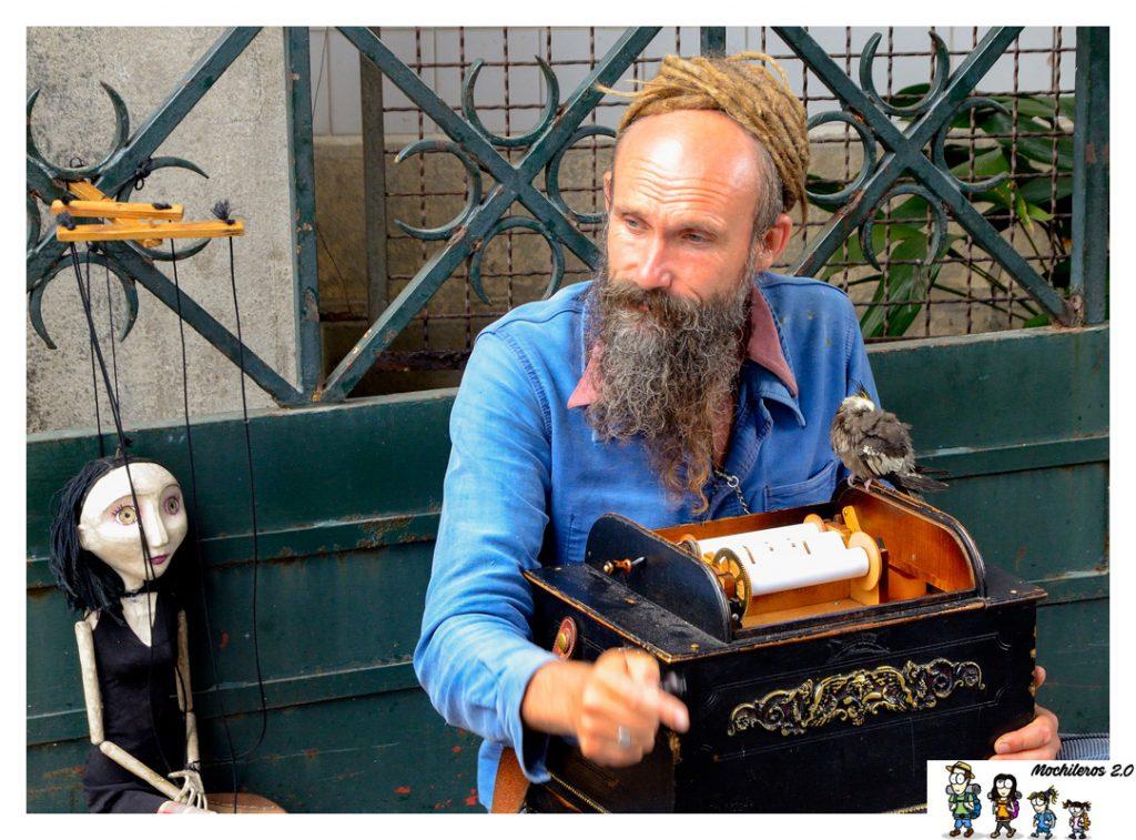 musico callejero oporto