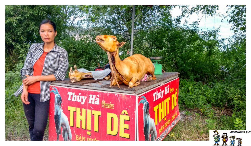 vietnam cabra