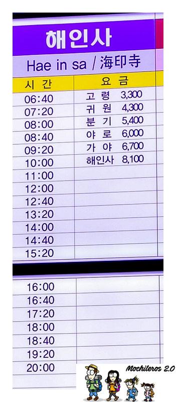 horario bus daegu haeinsa