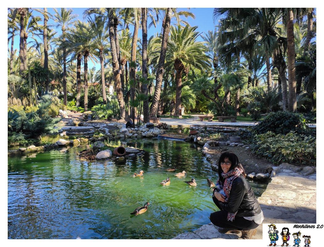 Huerto Del Cura El Jardín Más Bonito Del Palmeral De Elche