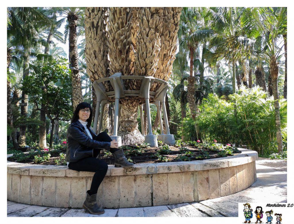 huerto cura palmera imperial