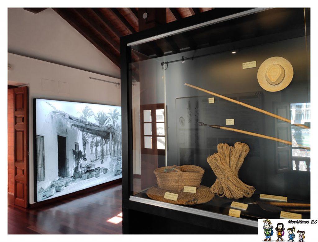 museo palmeral elche