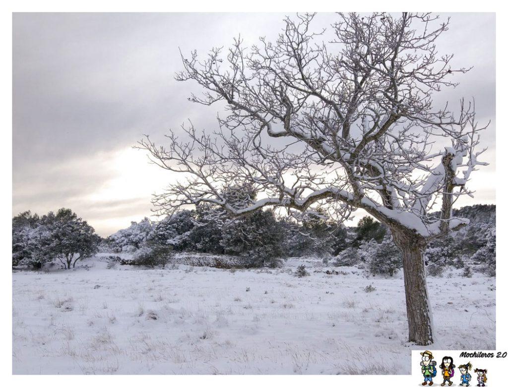 nieve aitana alicante