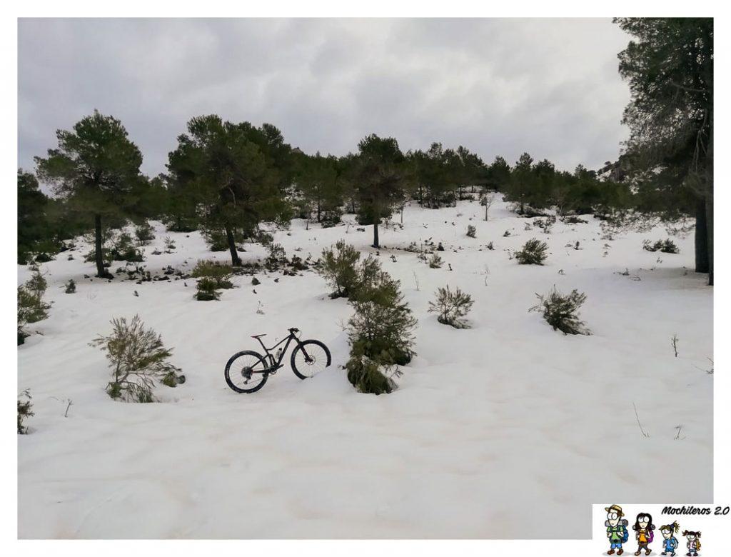 nieve carrasqueta alicante