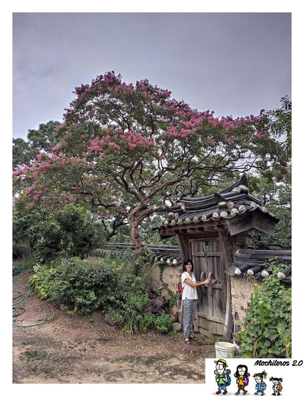 aldea historica yangdong