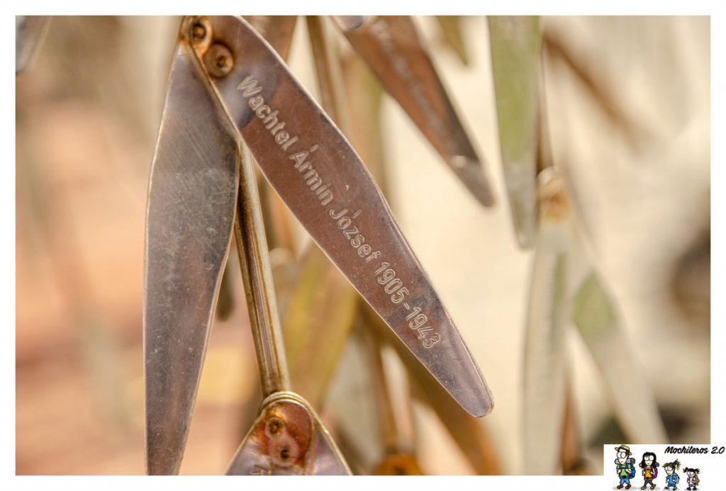 hojas arbol vida budapest