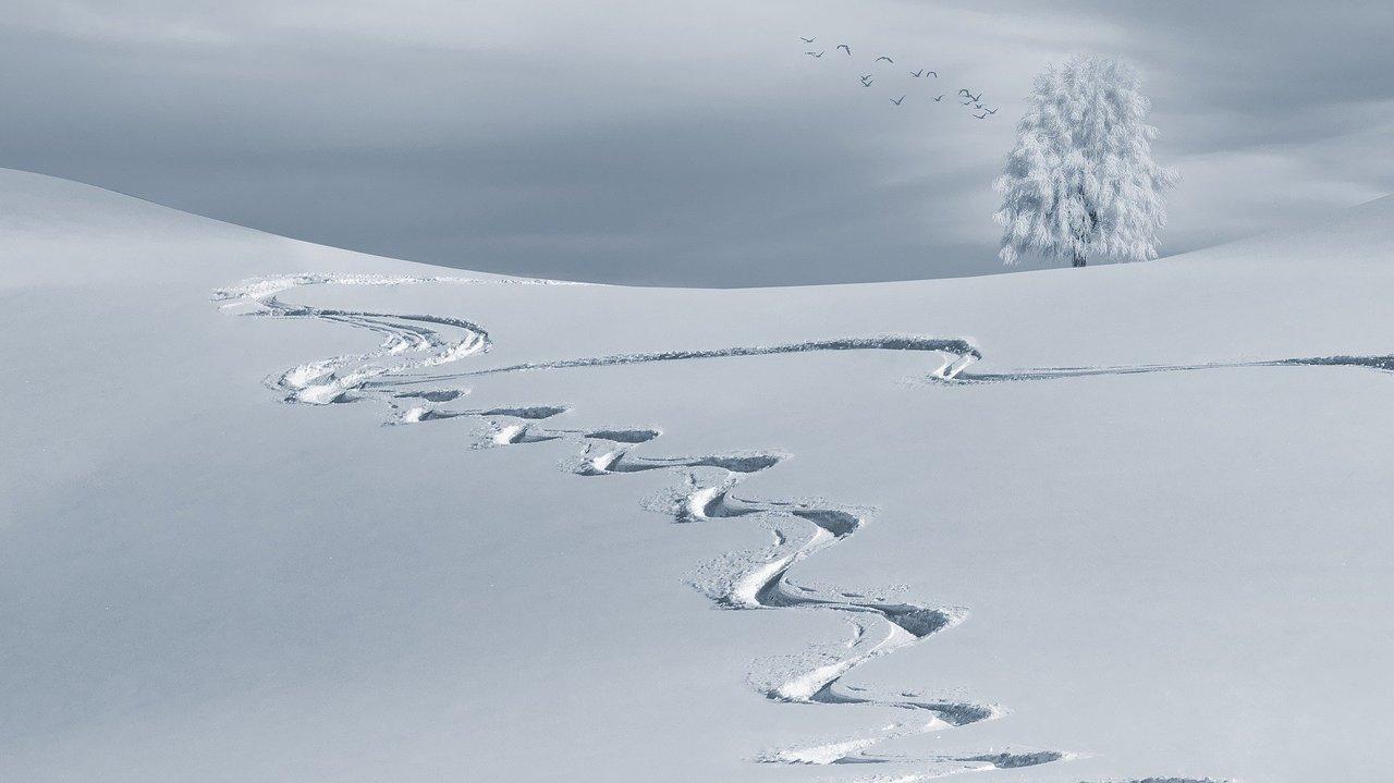 Desconecta este invierno en las mejores pistas de esquí de Andorra