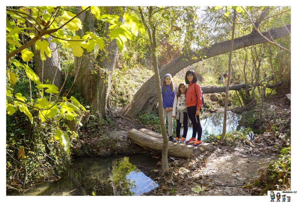 Tramo con tronco sobre el río