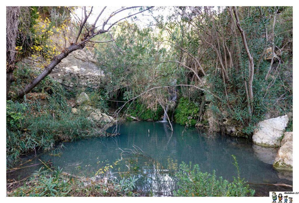 Toll en la ruta del Agua de Sella