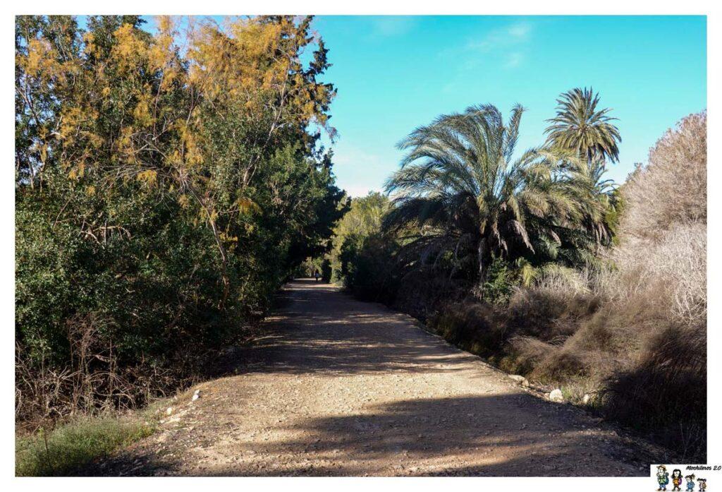 Inicio ruta 1 Clot Galvany, Arenales