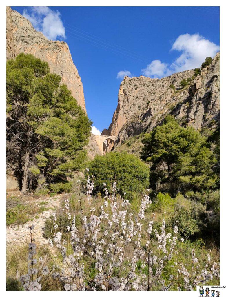 Vistas del cañón desde el inicio de ruta