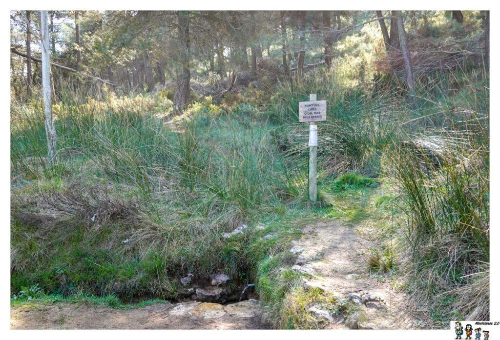 Font Mas dels Arbres, Sierra Mariola