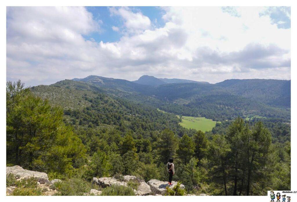 Vistas de la Sierra, con el Montcabrer al fondo
