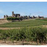 Artajona y su imponente cerco medieval