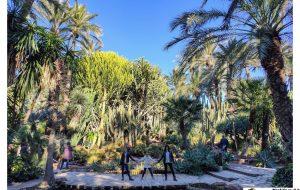 jardin huerto cura